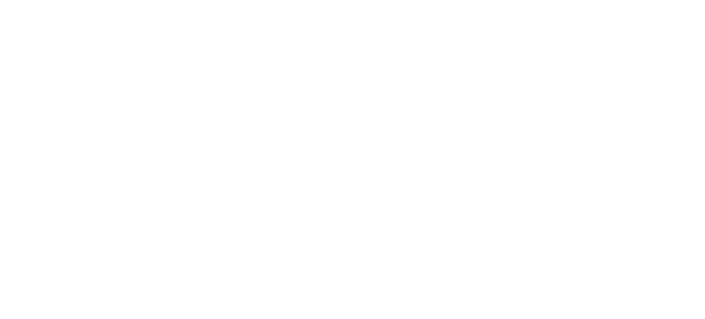 Social responsibility and profesional ethics